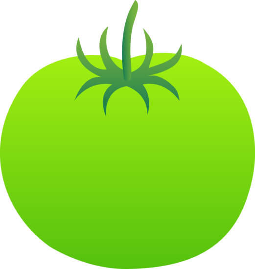 Bright Green Tomato Fruit