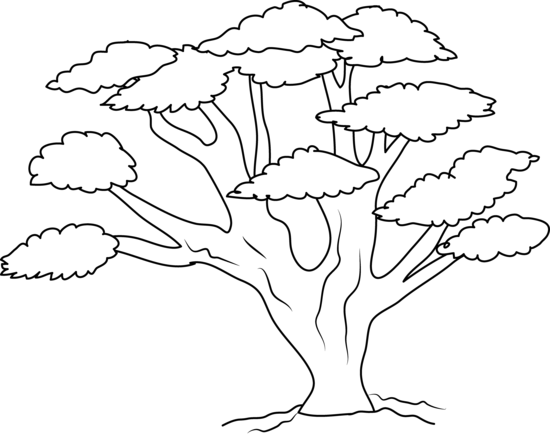 Oak Tree Coloring Page Free Clip Art