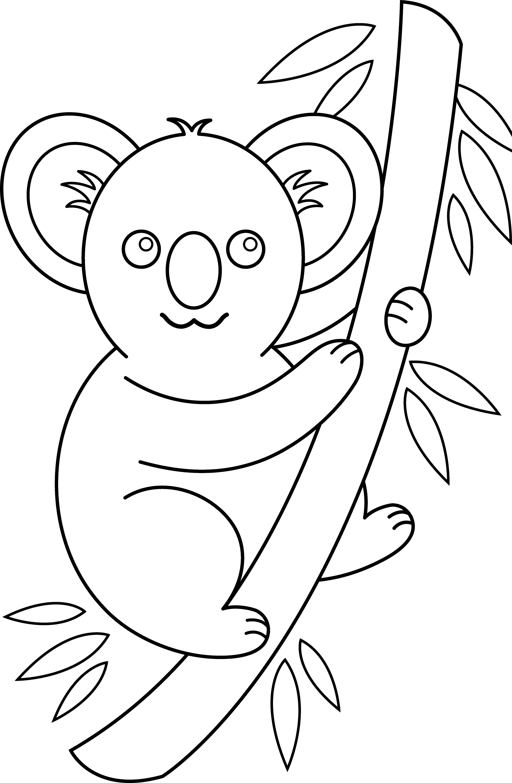 Line Drawing Koala : Koala line drawing