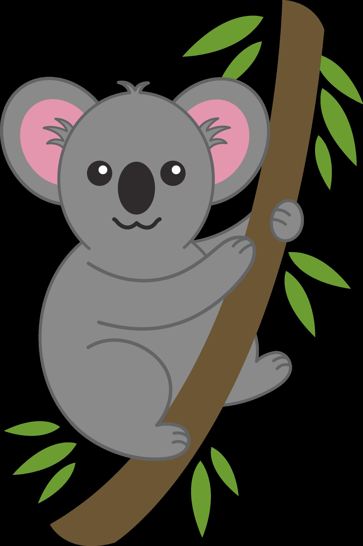 Pics Photos - Koala Bear Bears Marsupial Cartoon Art Magnets 4 10