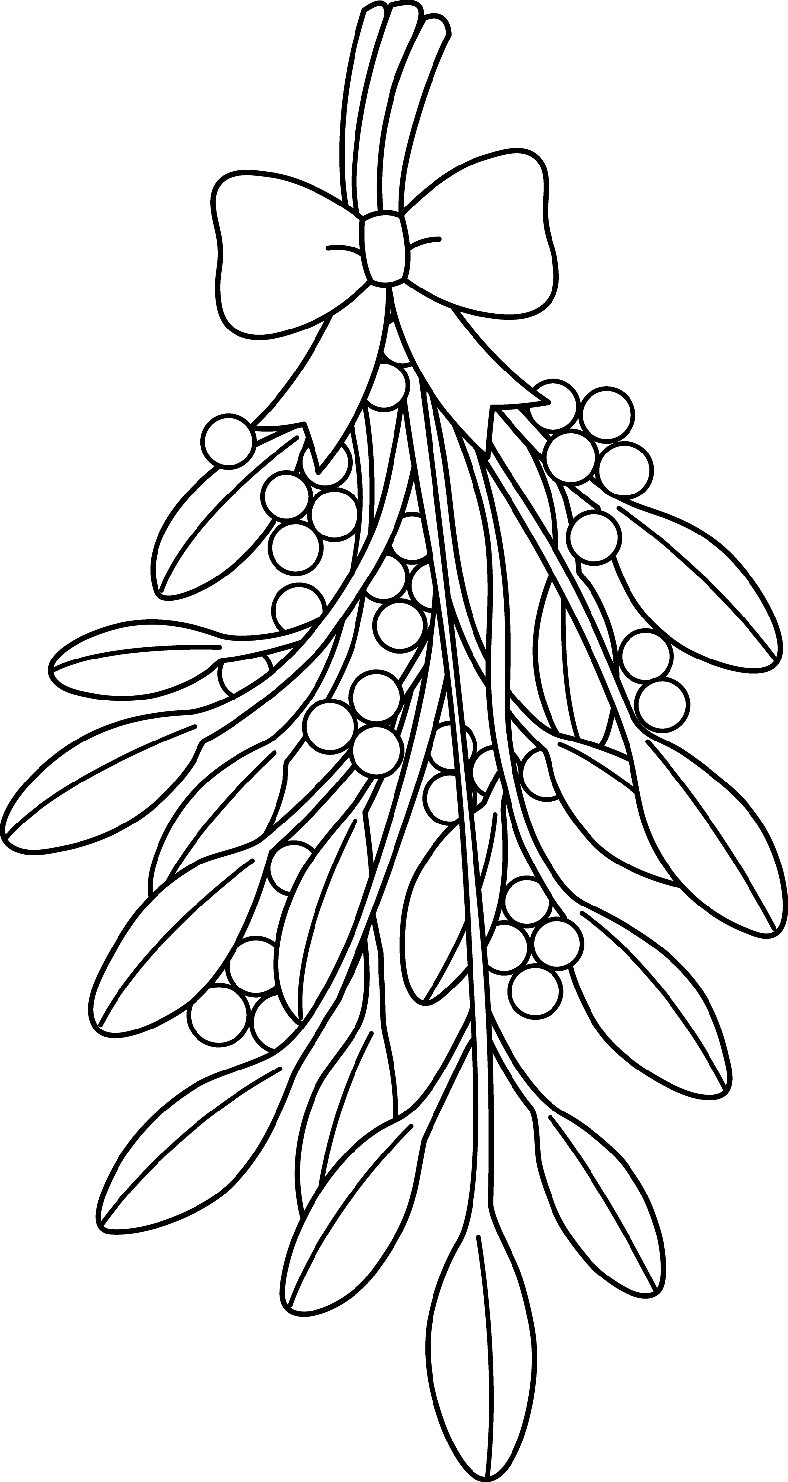 It is a picture of Gorgeous Mistletoe Coloring Page