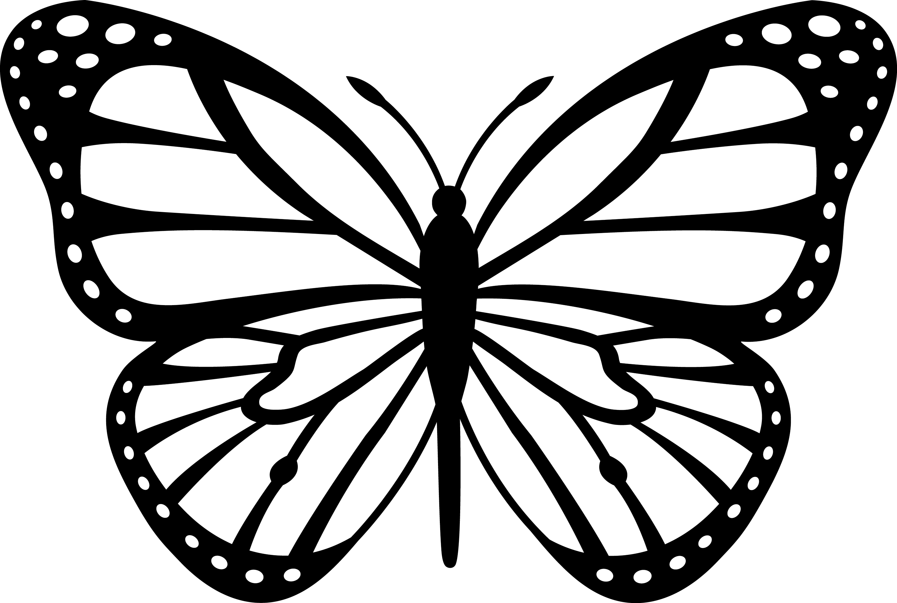 Line Drawing Butterfly : Black and white monarch butterfly free clip art
