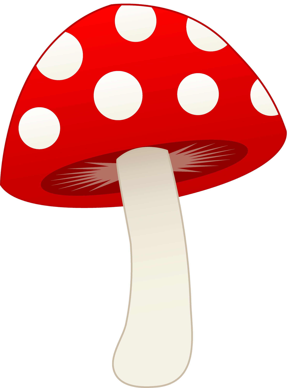 Red and white mushroom free clip art Free graphic art