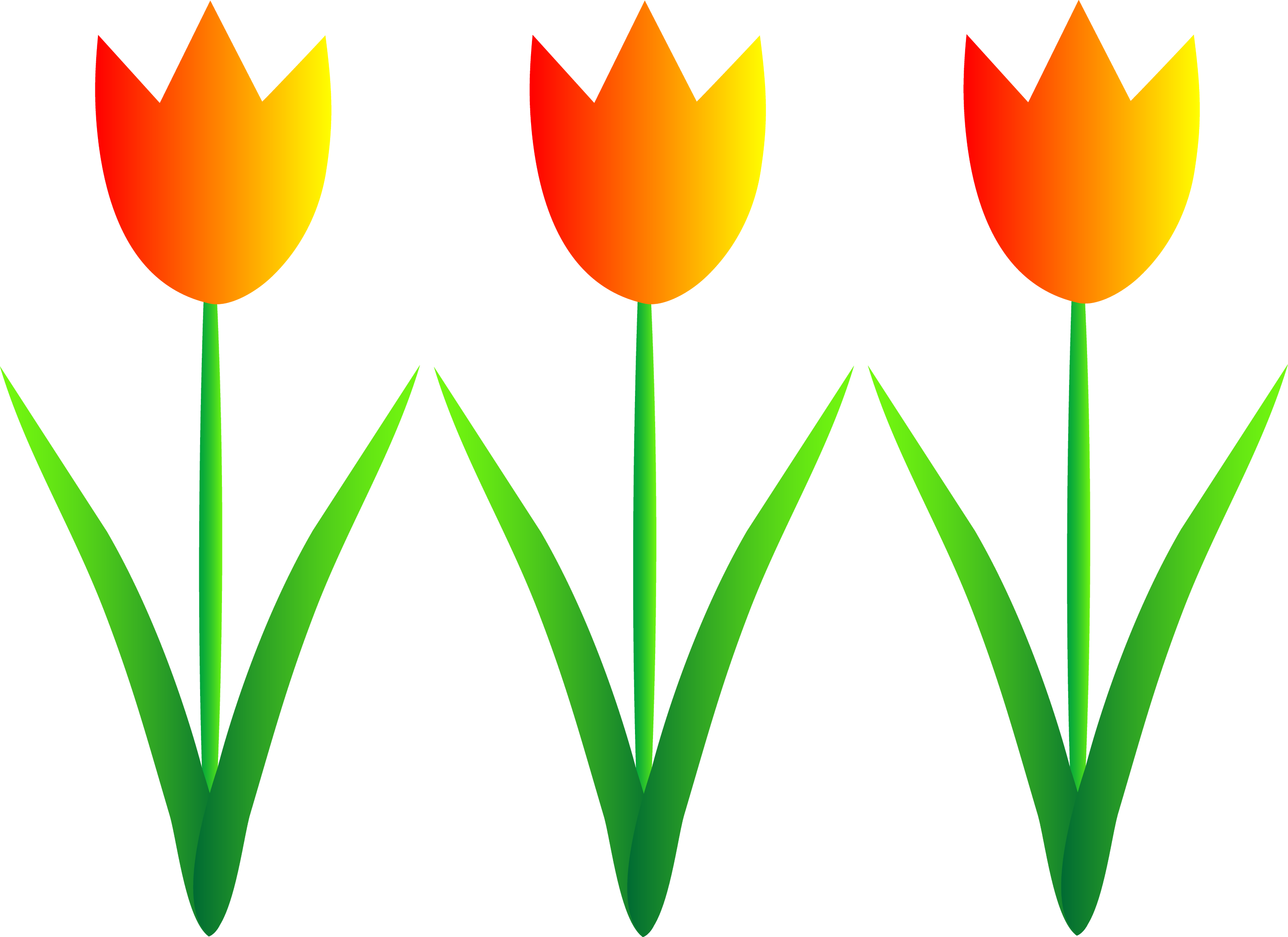 Three Colorful Spring Tulips - Free Clip Art