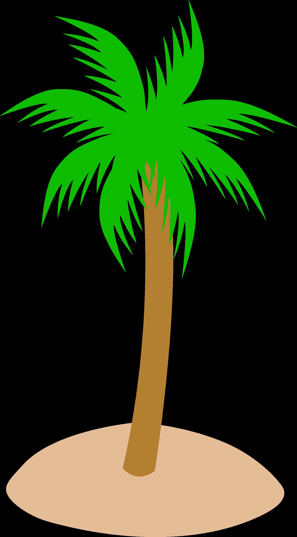 palm tree beach clipart - photo #30