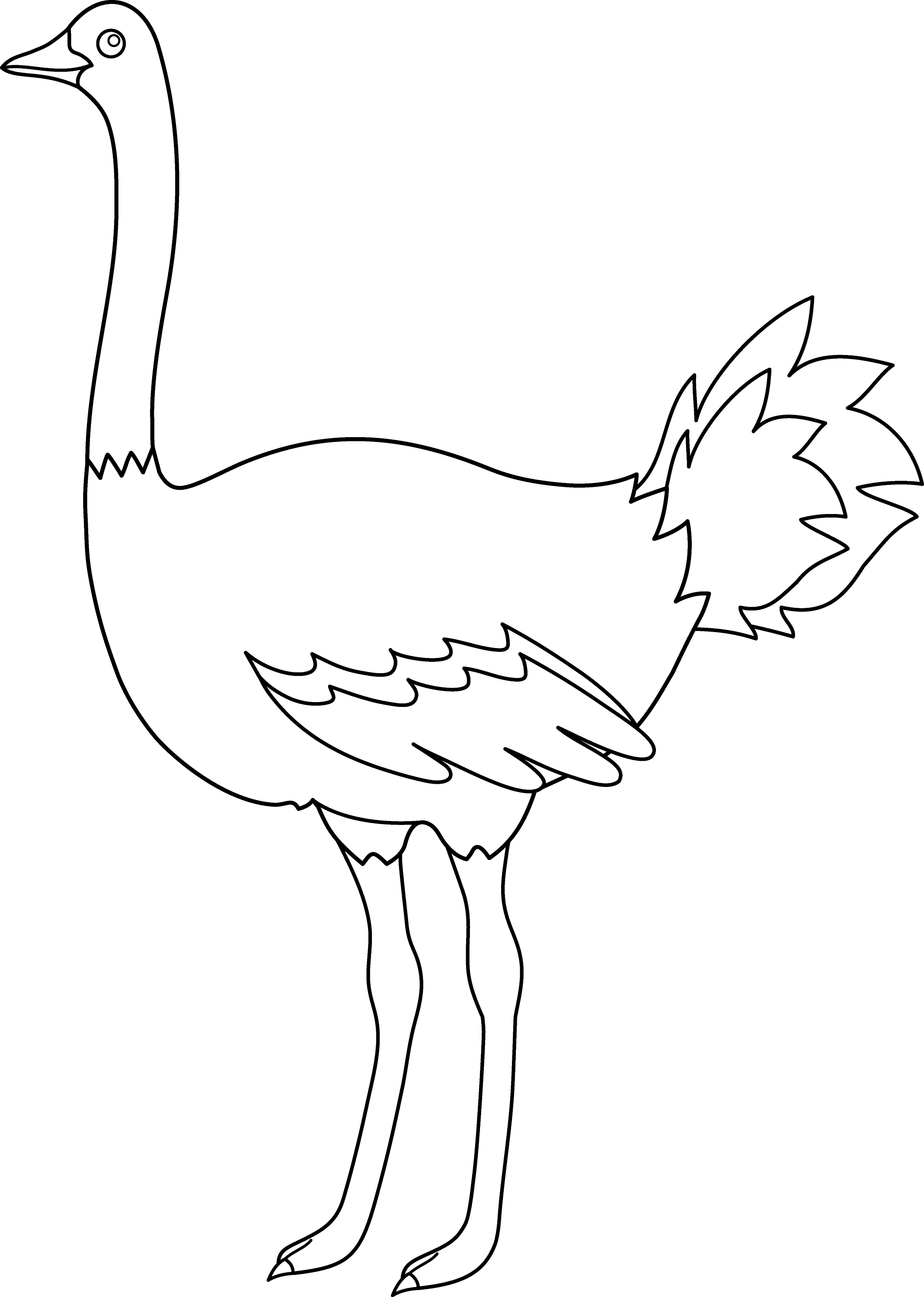 Free Coloring Pages Of Emu Outline