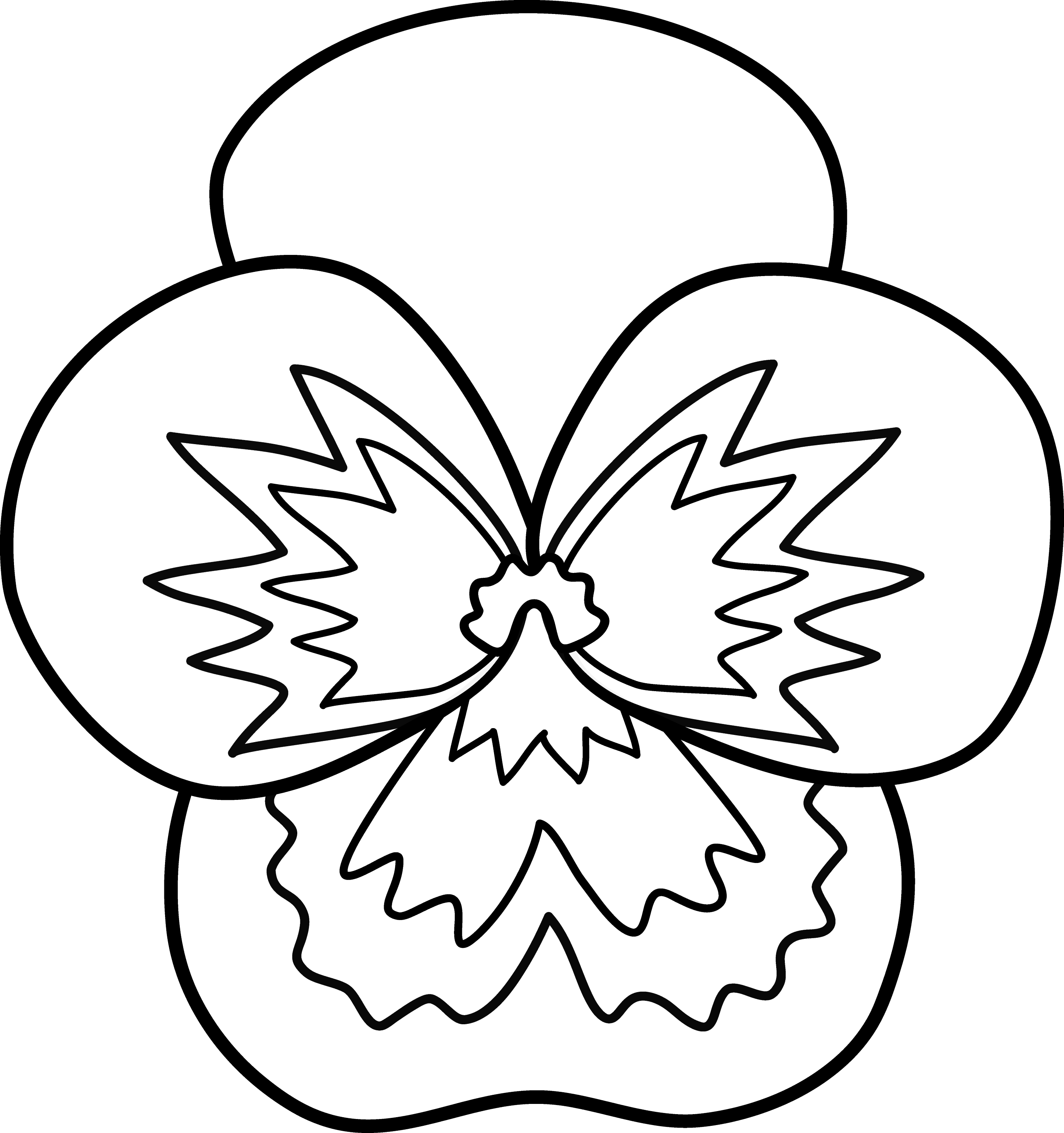 Flower Line Drawing Clip Art Free : Pansy flower line art free clip