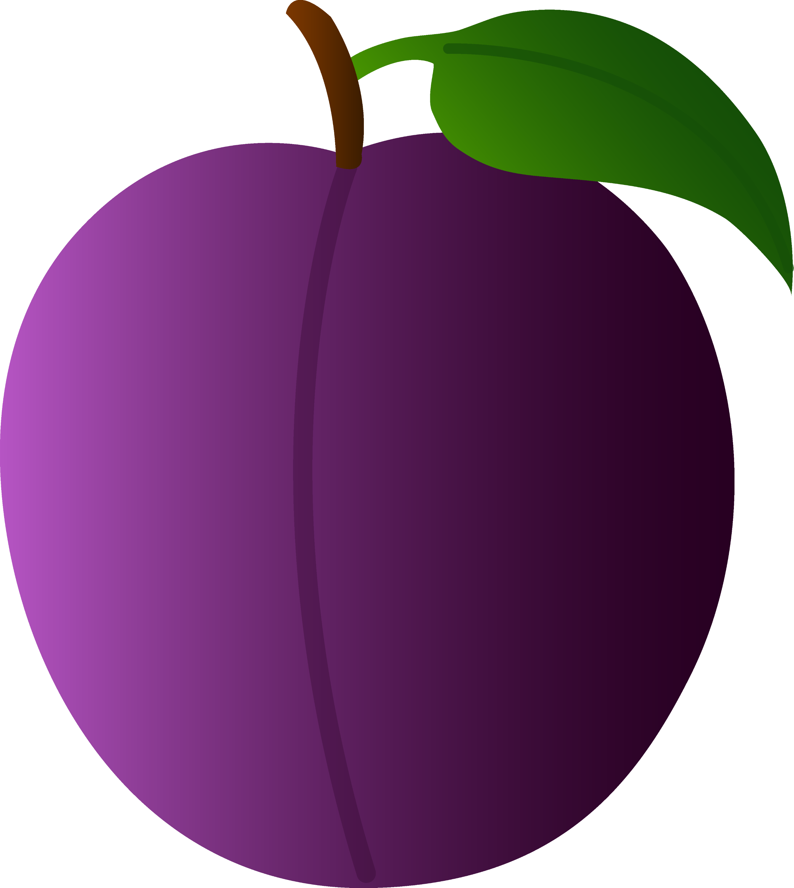 Plum Drawing Sweet purple plum - free clip art