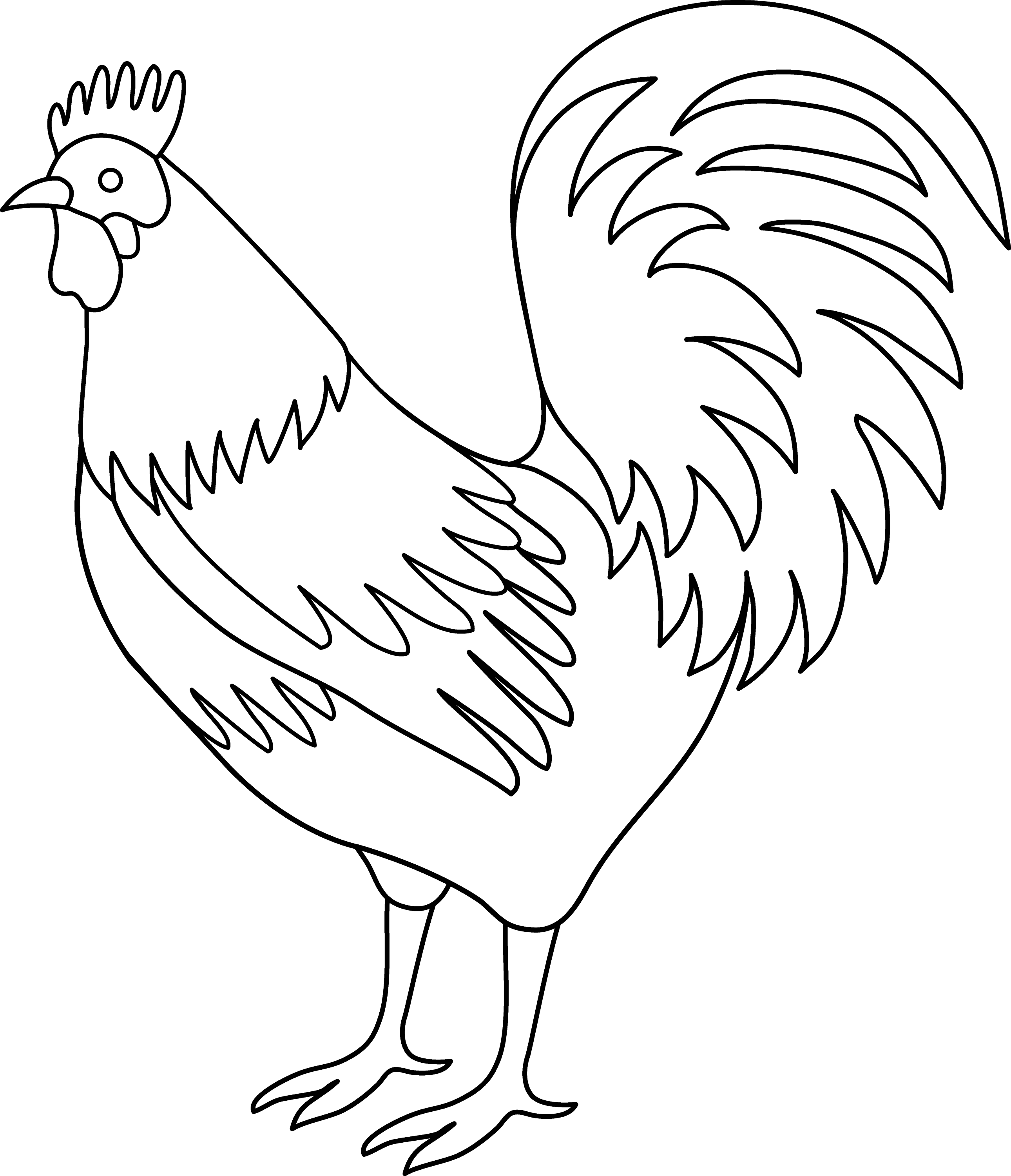 Rooster Line Drawing