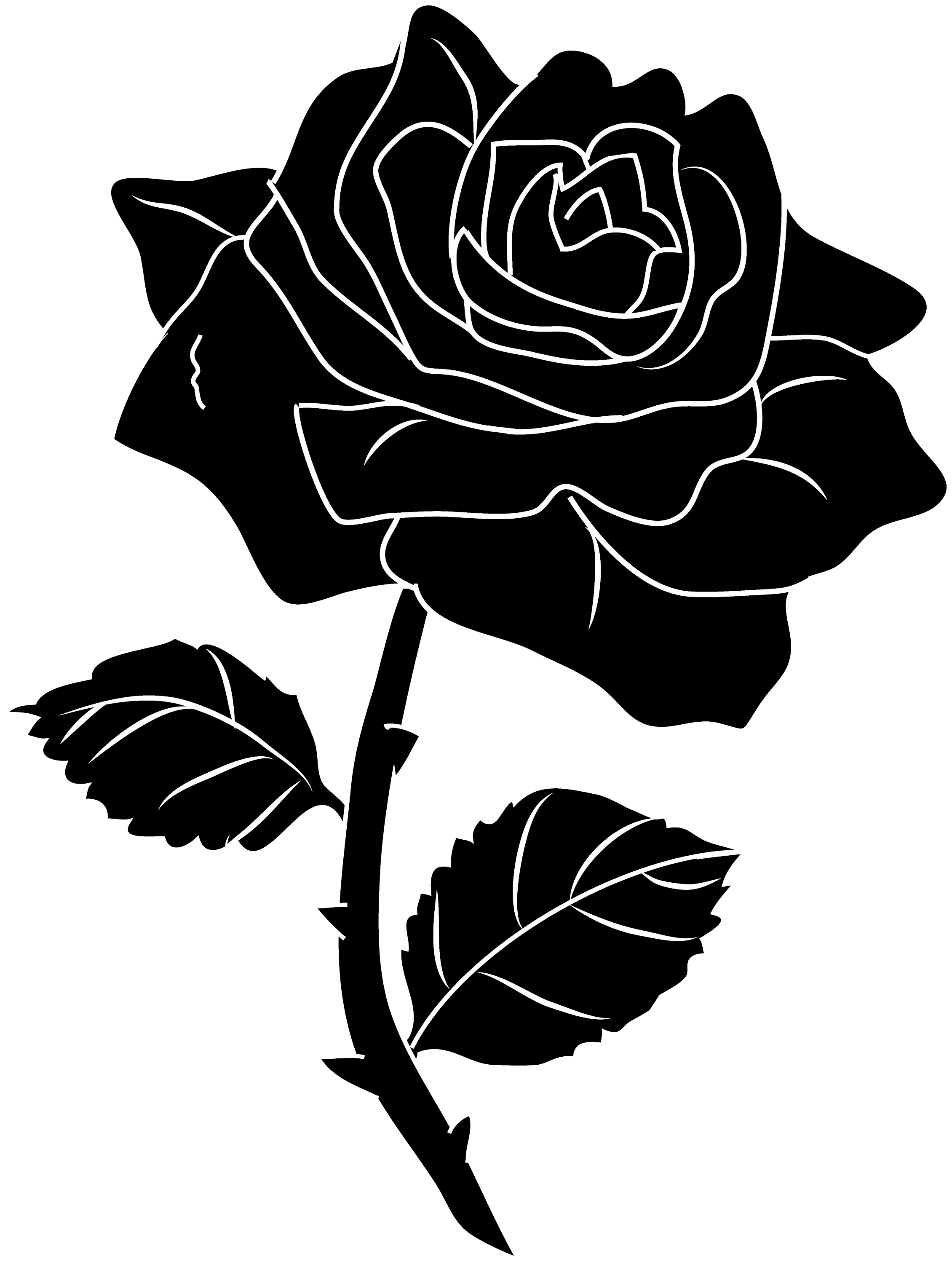clipart roses black and white - photo #38