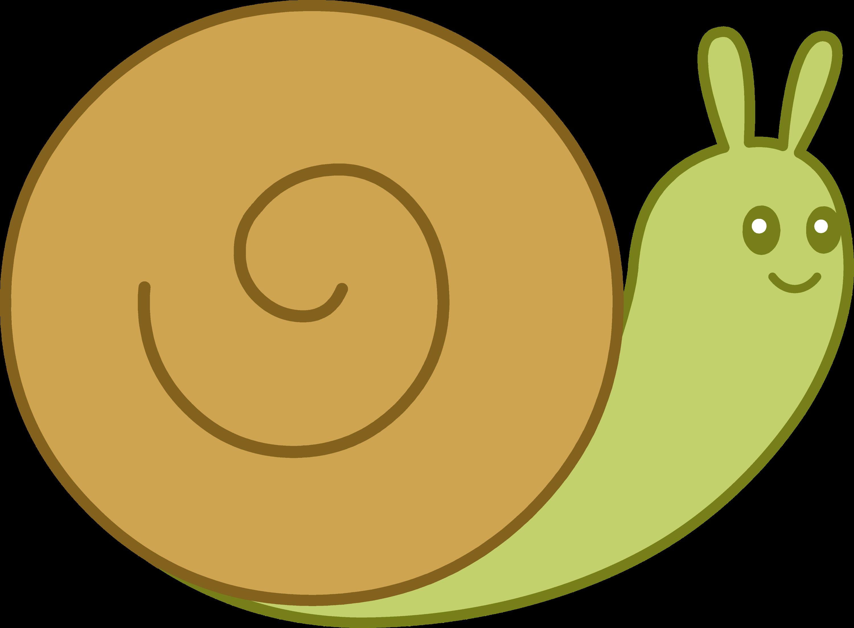 Snails 1