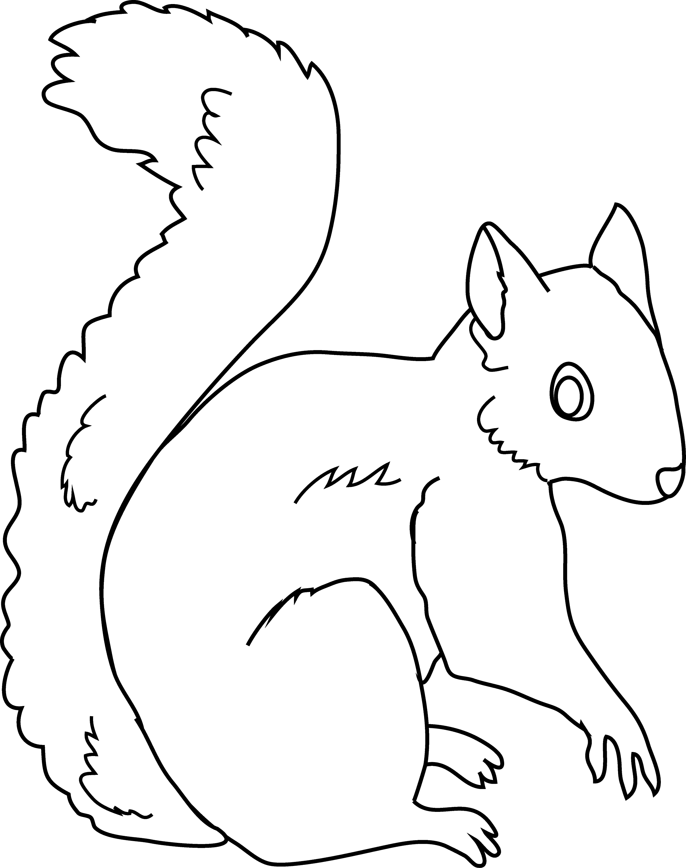 Line Drawing Squirrel : Squirrel coloring page free clip art