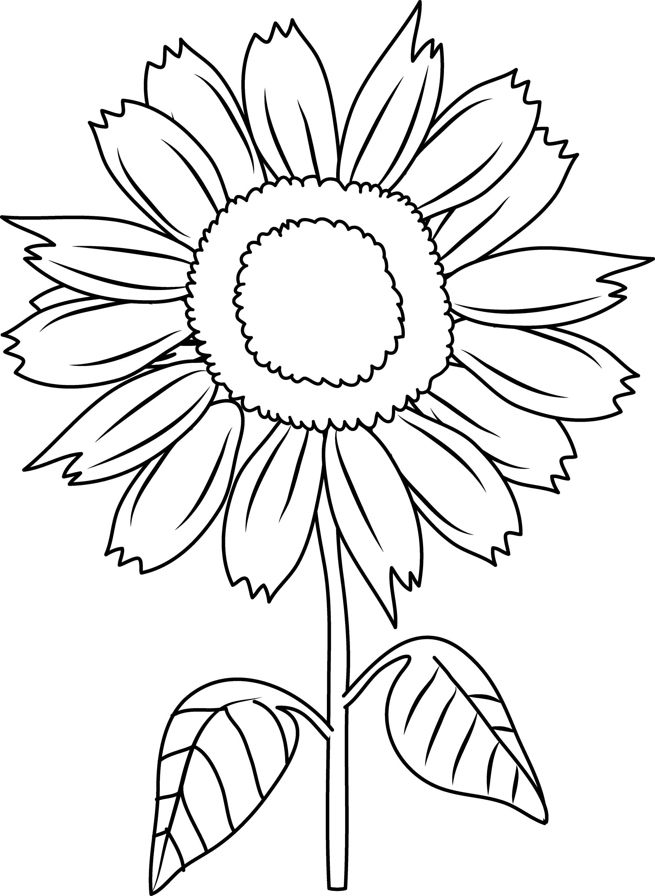 free black and white clip art sunflowers - photo #15