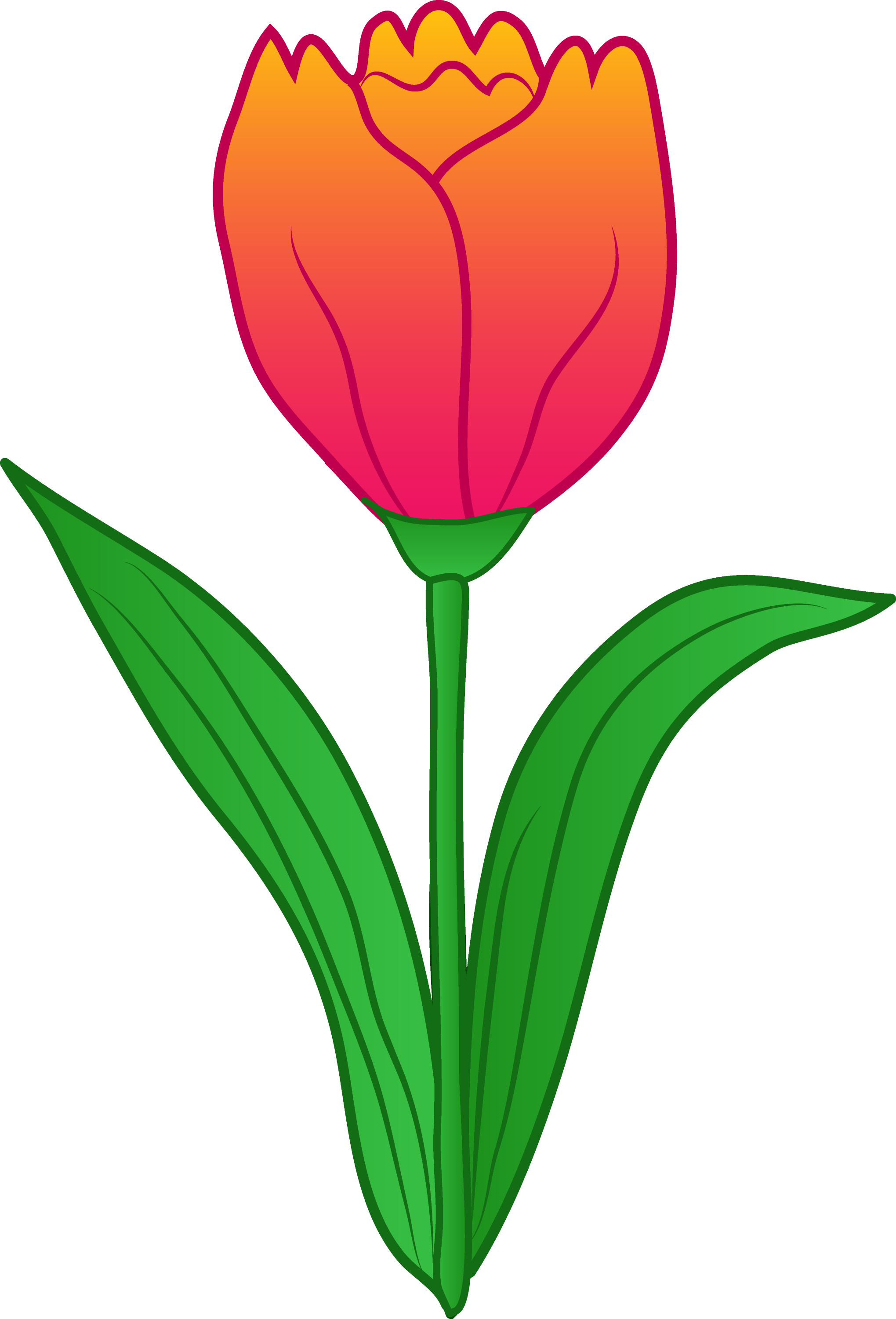 Pretty Pink Tulip Flower Free Clip Art