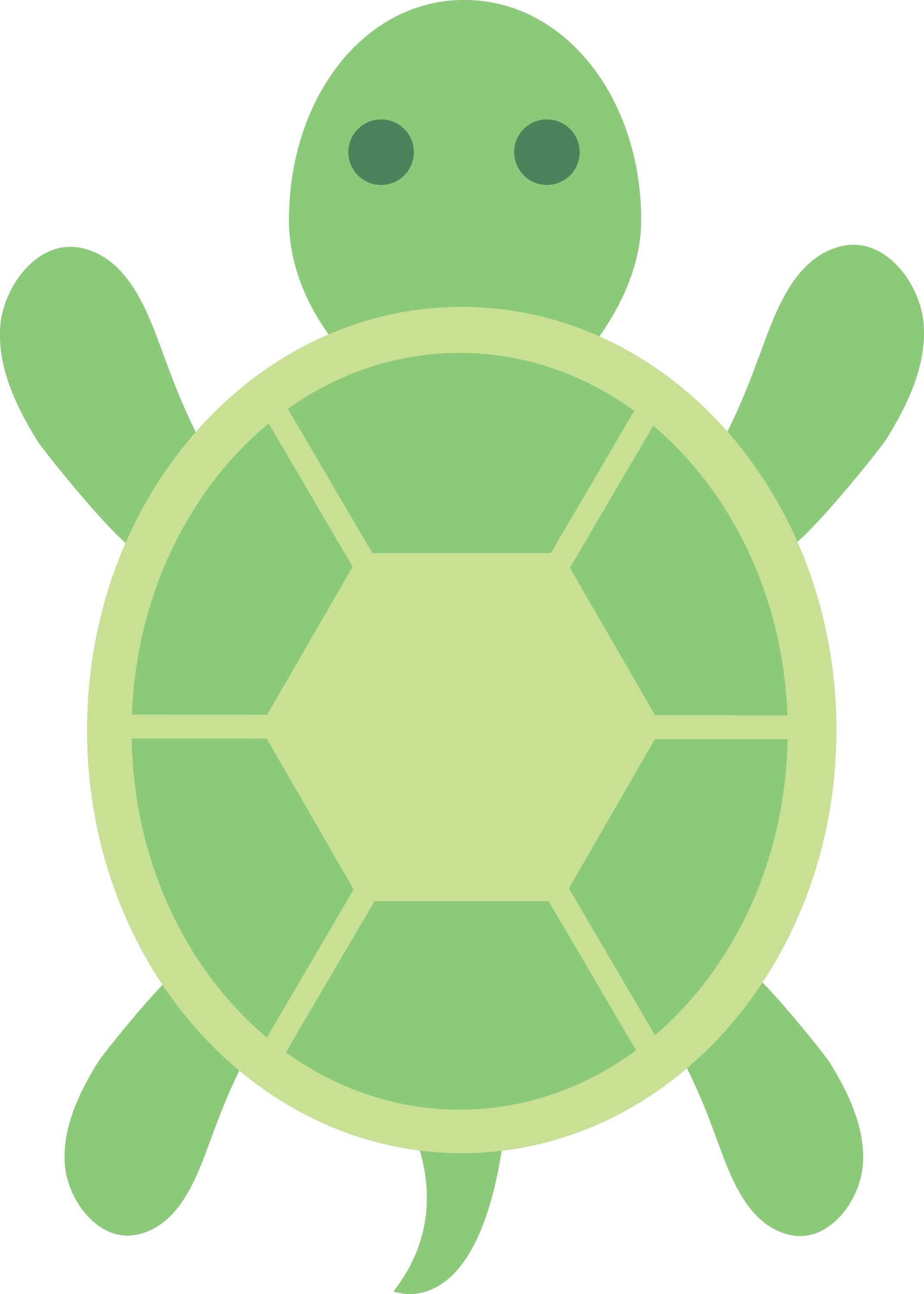Cute Green Turtle Clip Art Free Clip Art