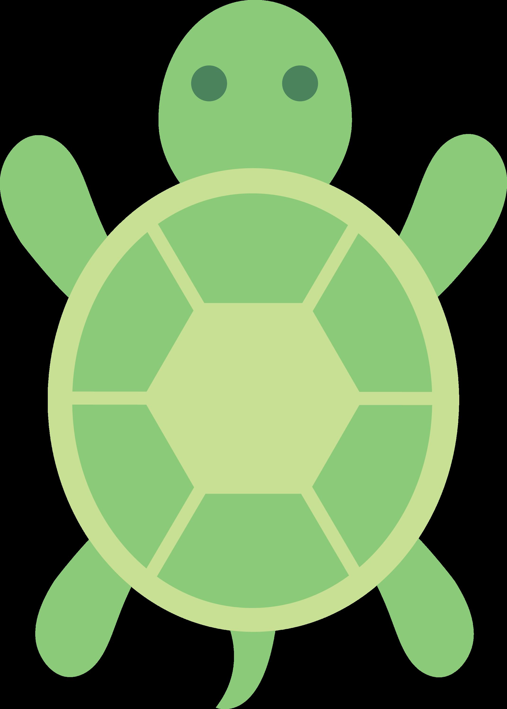green turtle clip art - photo #4