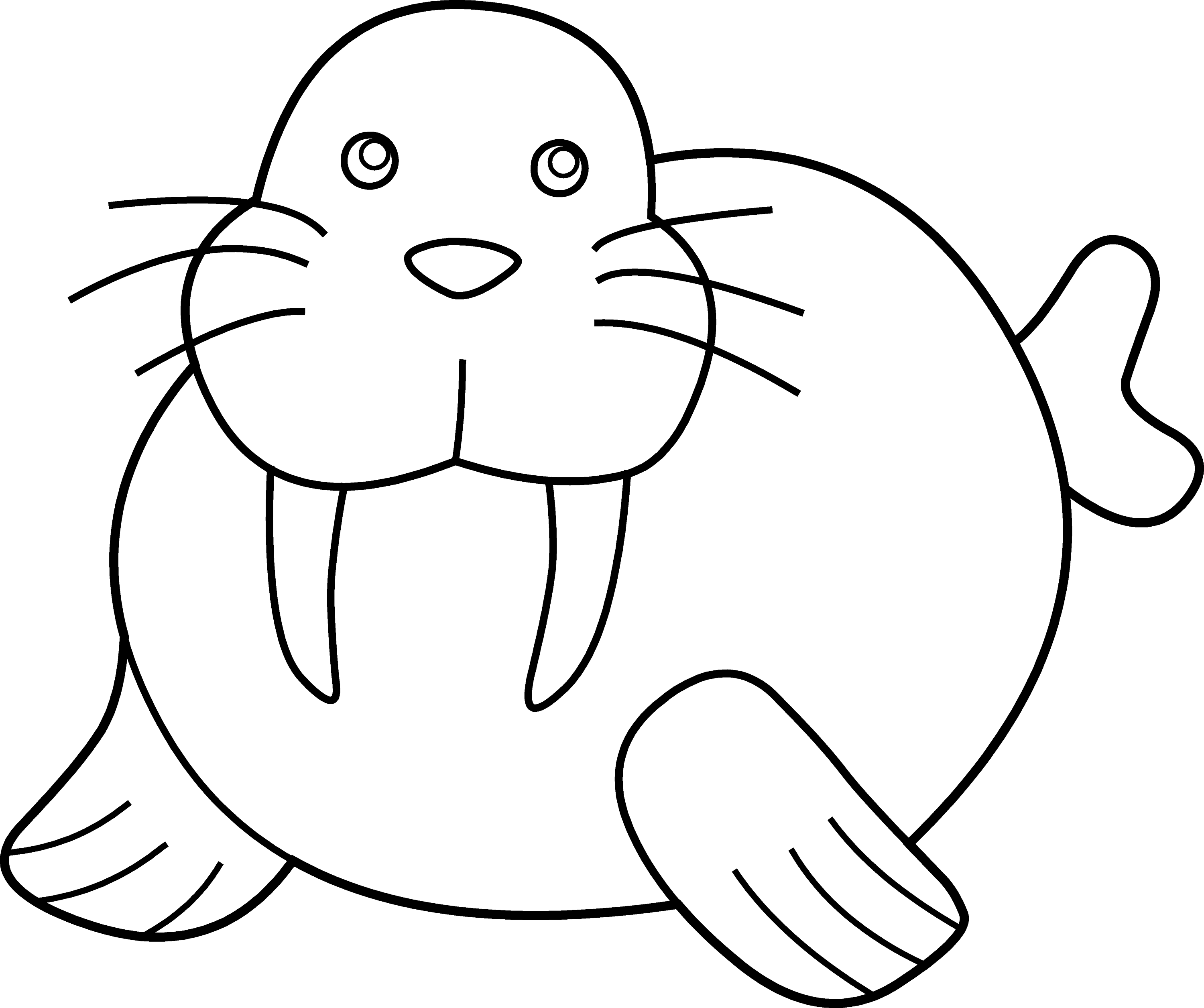 cute walrus coloring page free clip art
