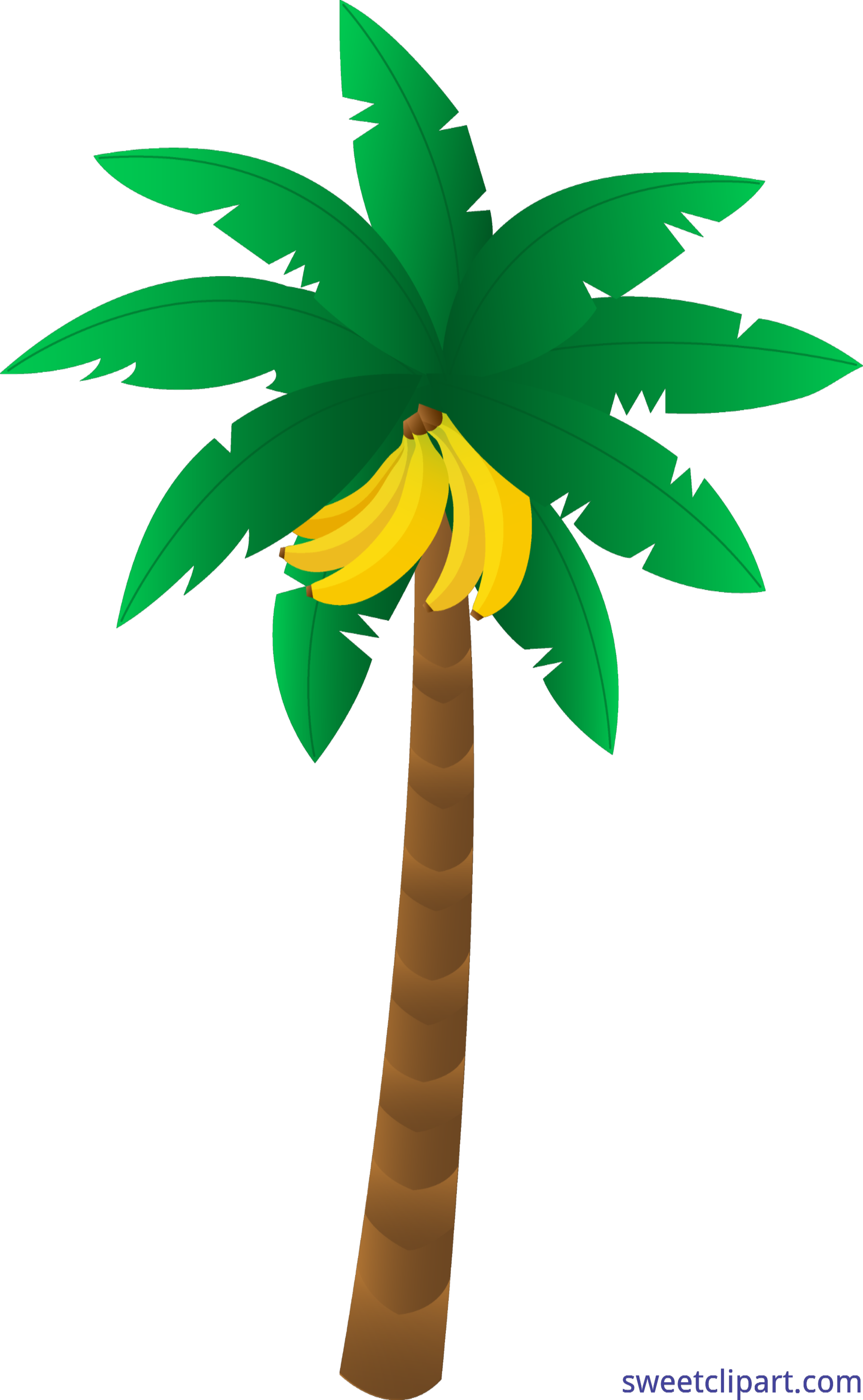 banana tree clip art sweet clip art rh m sweetclipart com banana tree leaves clip art banana tree clip art free