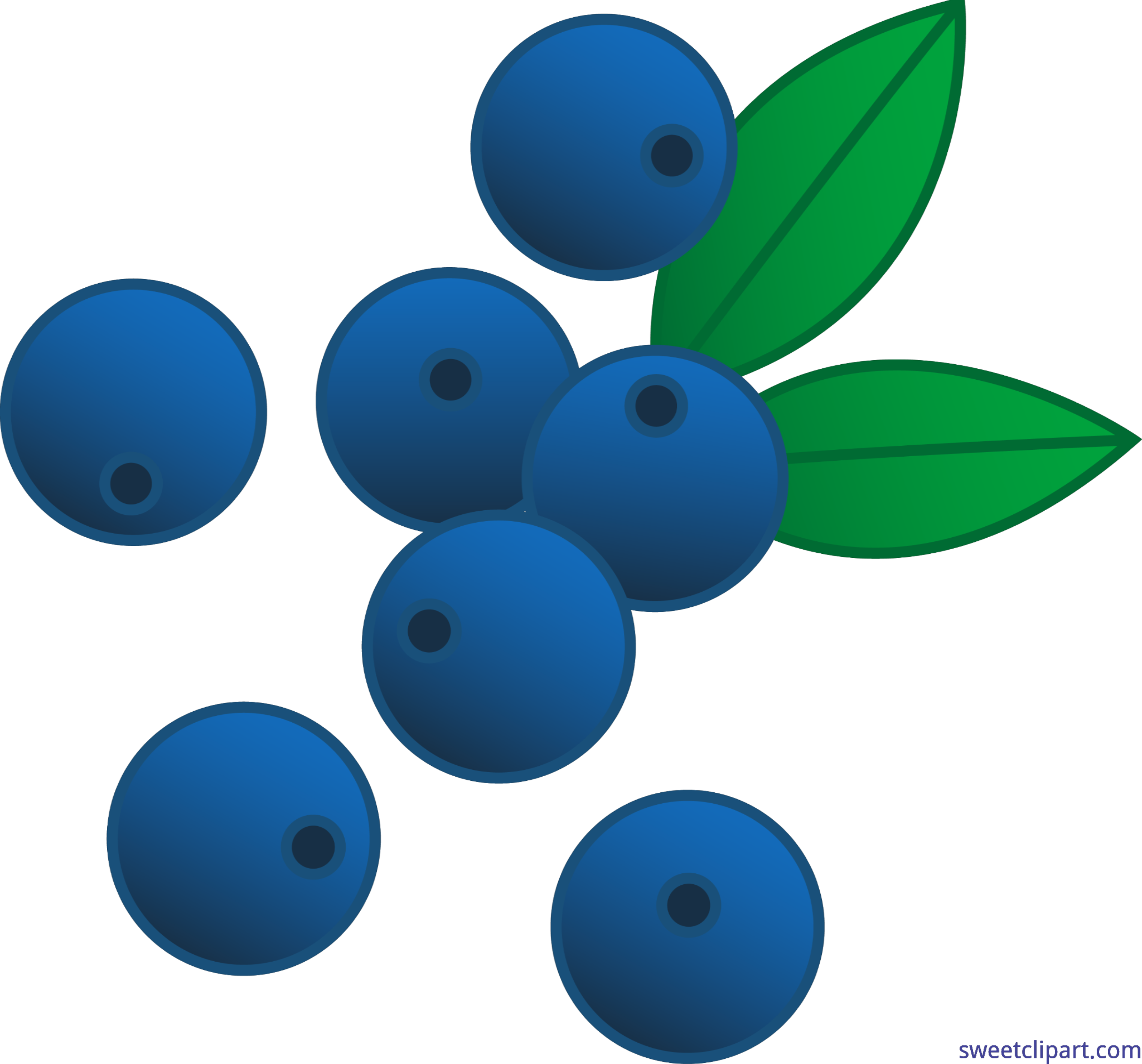 berries blueberries clip art sweet clip art rh m sweetclipart com blackberry clipart clipart blueberry muffin