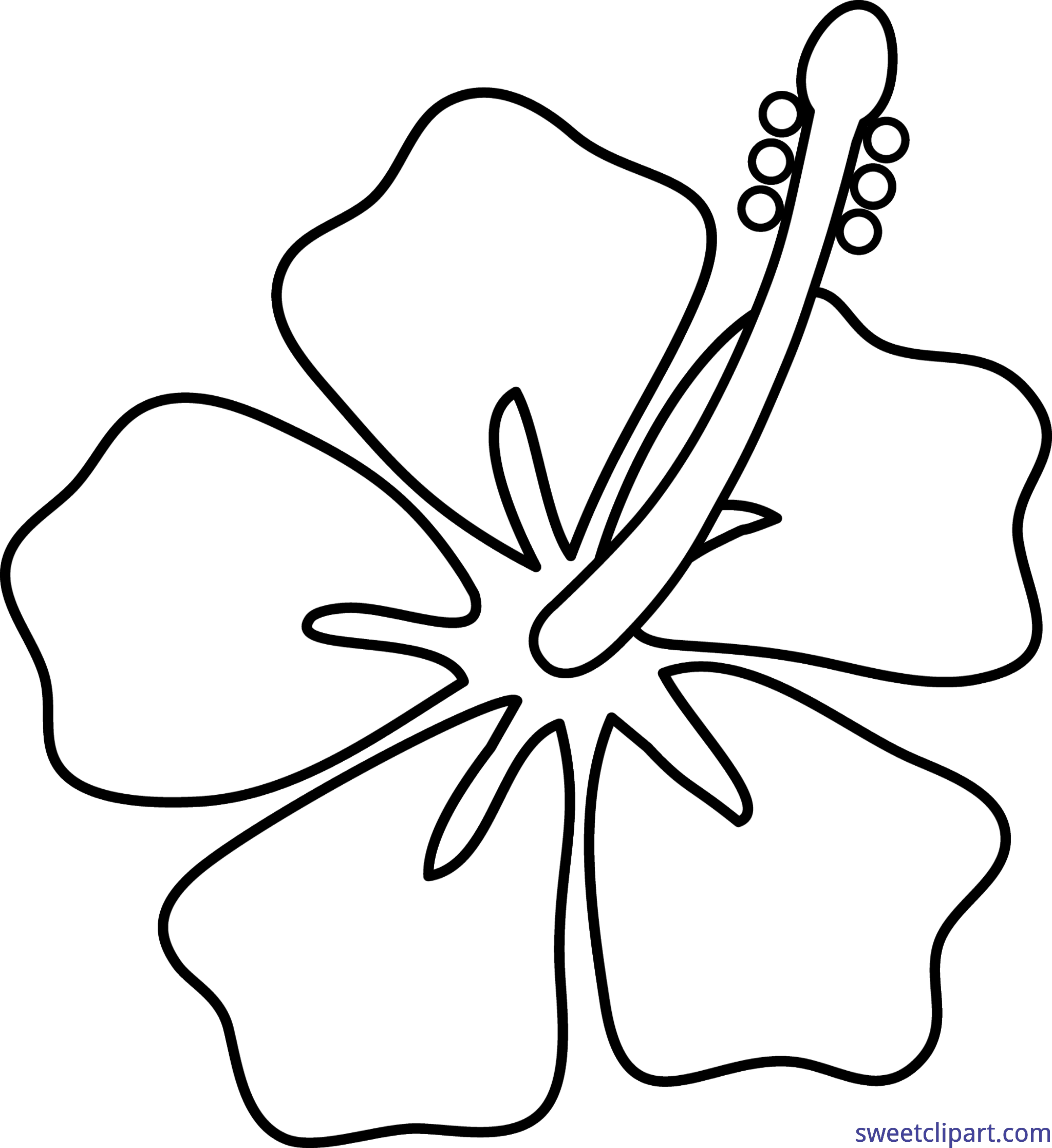 Hibiscus flower lineart clip art sweet clip art hibiscus flower lineart clip art izmirmasajfo