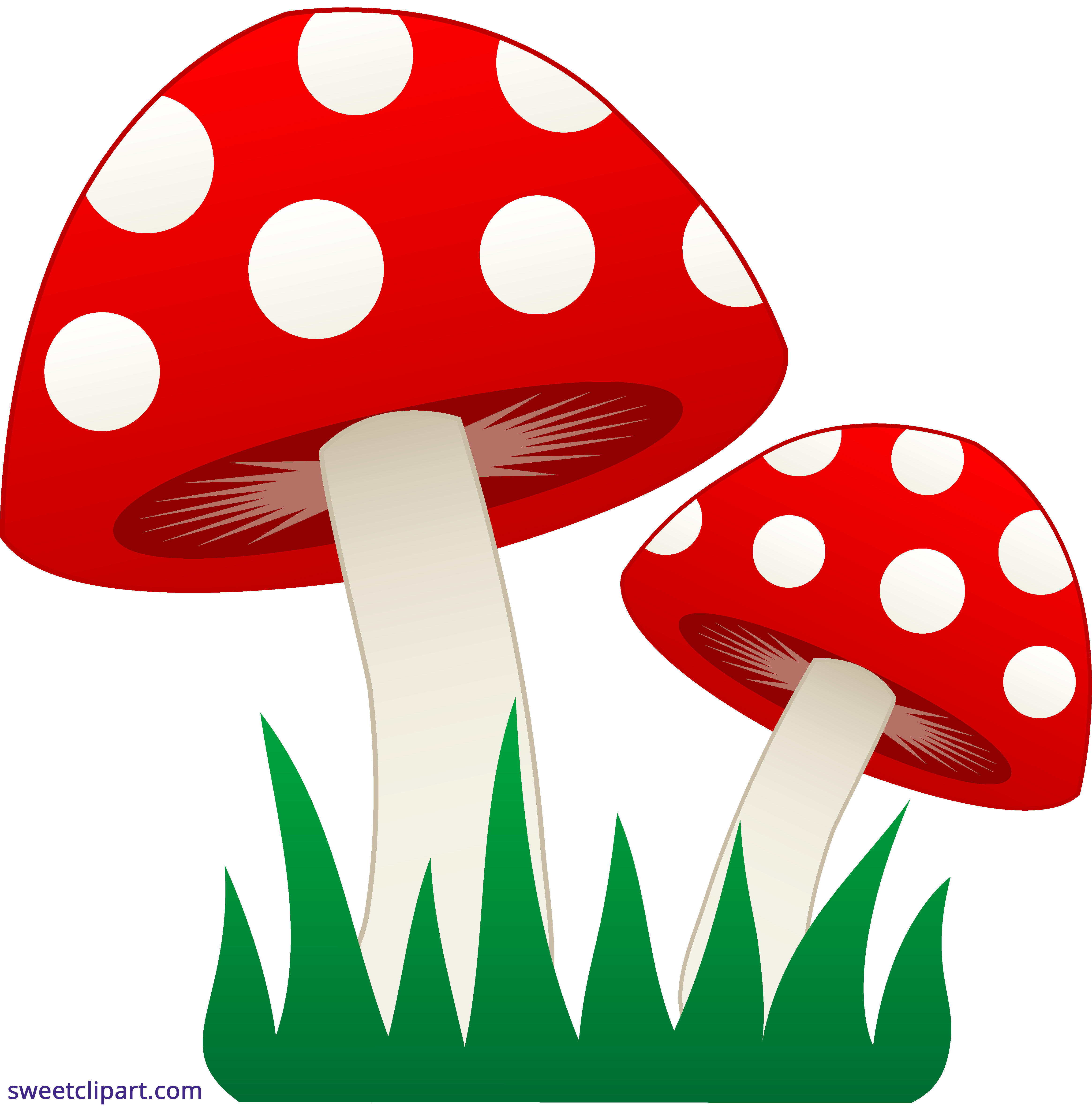 mushrooms in grass clipart sweet clip art rh m sweetclipart com grass clipart transparent grass clip art pictures