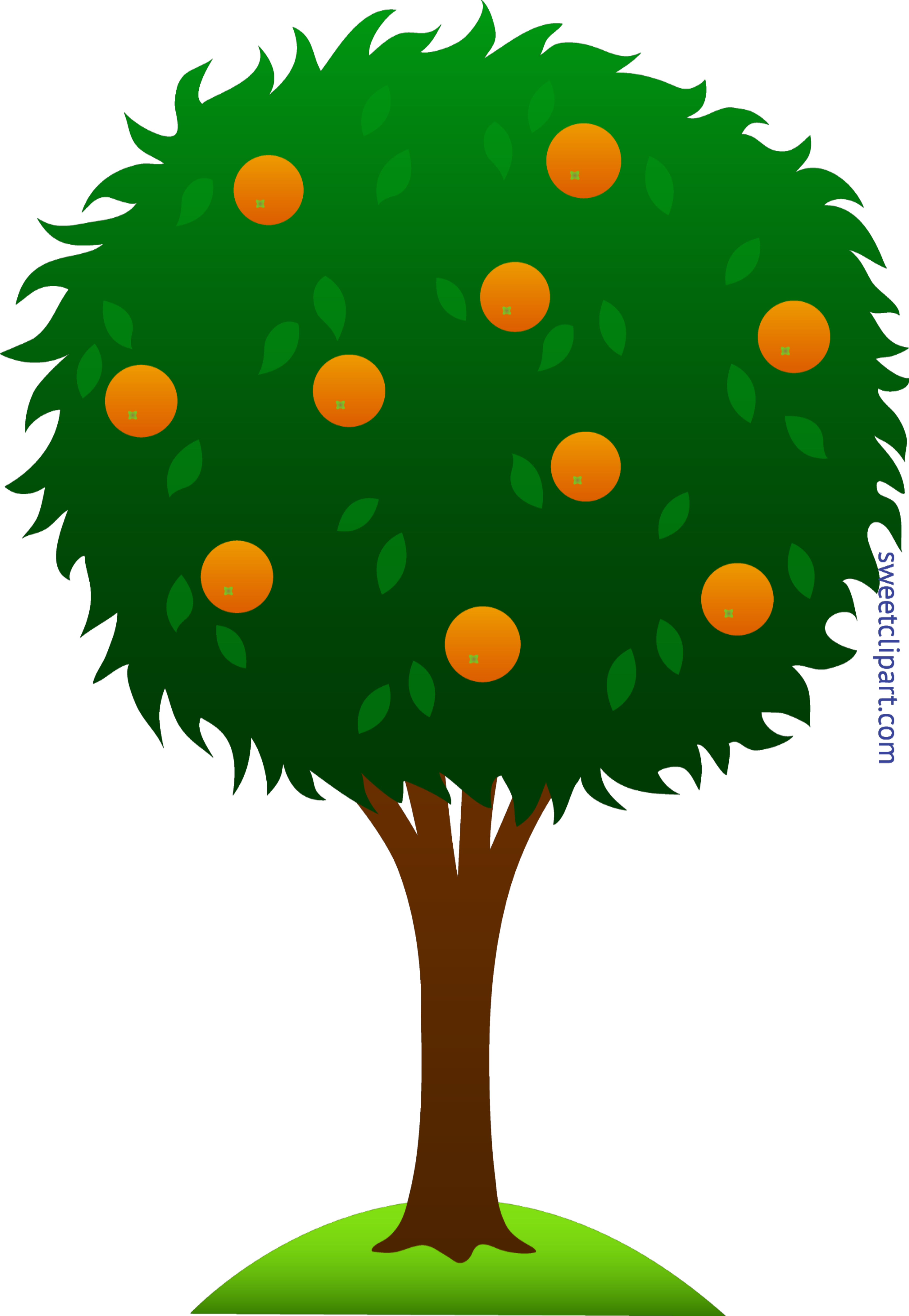 orange tree clip art sweet clip art rh m sweetclipart com clipart of a tree black and white clipart of a tree trunk