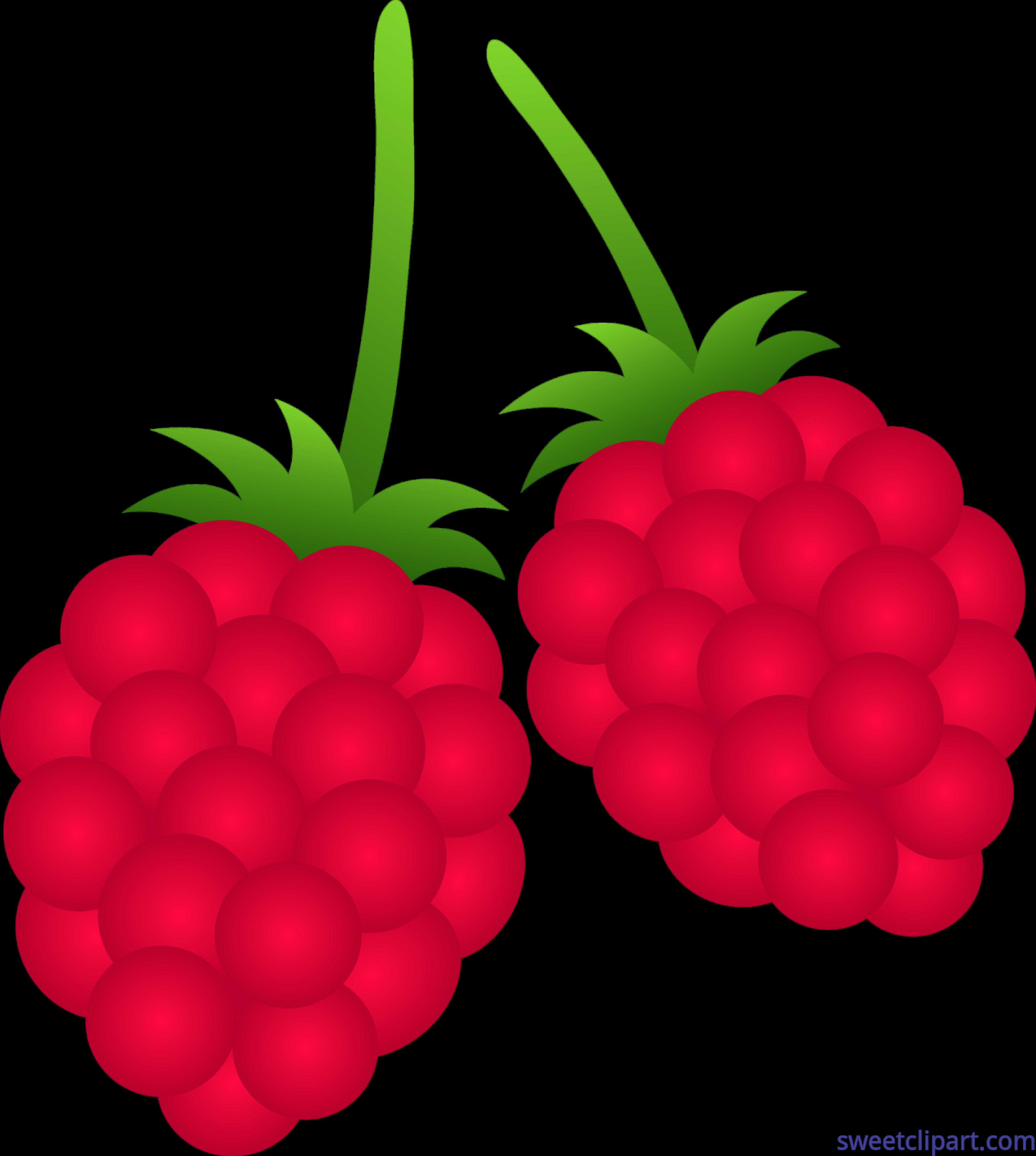 raspberries clip art sweet clip art rh m sweetclipart com strawberry clip art download strawberry clip art images
